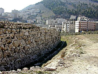 Shechem (