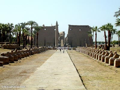 Luxor Temple with Avenue of Sphinxes