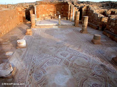 Mosaic floor of Nilos Church in Mampsis