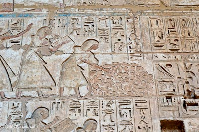 Medinet Habu, pile of hands for counting dead