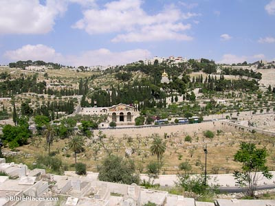 Mount of Olives and Garden of Gethsemane