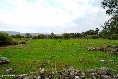 Plain of Bethsaida with green grass