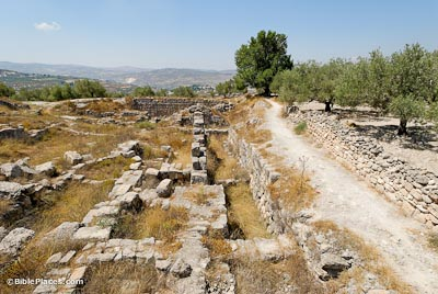 Samaria Iron Age acropolis from north