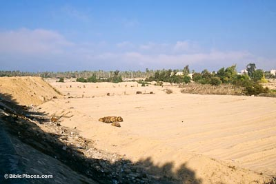 Wadi el-Arish looking north