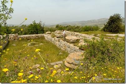 Samaria Herodian temple, tb050106512ddd
