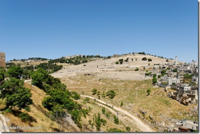 Mount of Olives from City of David, tb051907772