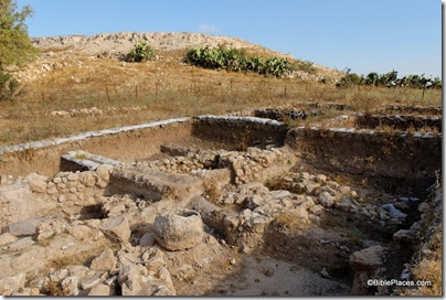 Gath, Tell es-Safi, Area E excavations from east, tb060906085ddd
