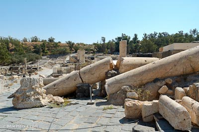 An area of ruins with large stone columns that have fallen over on stone pavement and broken in several places, with trees visible in the distance