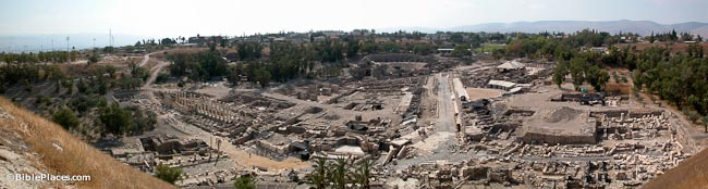 A wide view of excavations and ruins with some columns and stone structures surrounded by trees