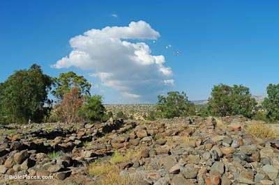 Piles of brick-size rocks next to low rock walls in a rectangular shape with trees in the background and a beautiful sky with clouds