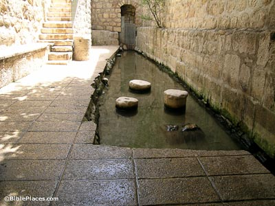 The Pool of Siloam Revealed (BiblePlaces com)