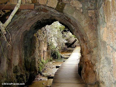 A wooden walkway over shallow water, leading under a thick stone arch and continuing on past trees and plants growing alongside a wall adjacent to the path
