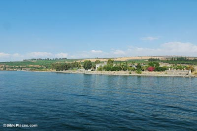 View from the Sea of Galilee of trees and buildings close to the shore