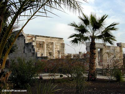 The remains of a structure with white stone block walls, standing columns, and a rectangular opening partially obscured by palm trees in the foreground