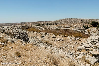 A large dirt area with many scattered rocks, and a rectangular section surrounded by a partially-preserved stone wall