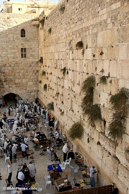 western wall bibleplaces com