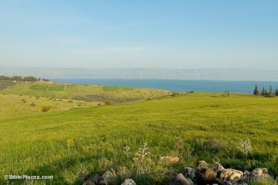 Vibrant, green, rolling hills overlooking the Sea of Galilee with mountains in the distance beyond the sea