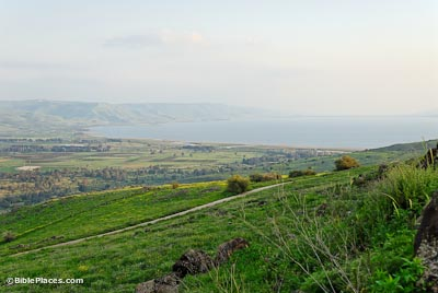 A grassy slope with scattered bushes leading down to a plain and the Sea of Galilee.