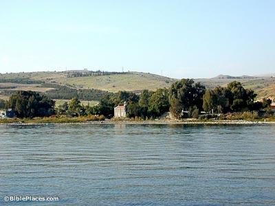 View from a boat on the Sea of Galilee toward the shore with big trees and a church-like building, green hills are in the background