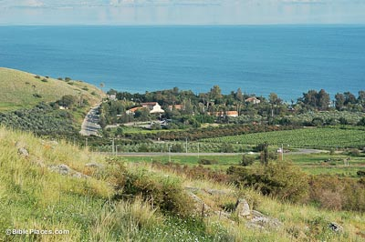 View from the top of a grassy slope looking at a group of buildings and trees, like a small town, on the edge of the Sea of Galilee
