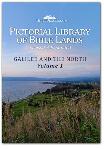 Galilee and the North