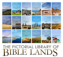 photos of the bible