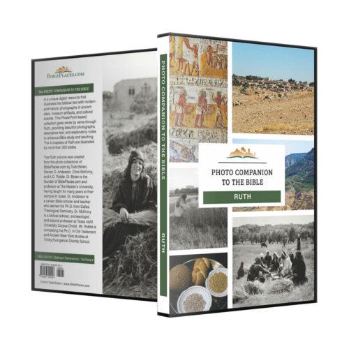 08-Ruth-dvd1200.jpg