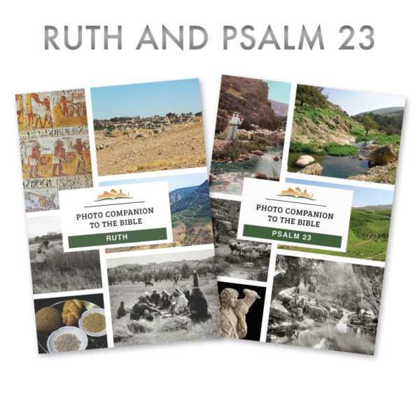 Ruth and Psalm 23 Photo Companion
