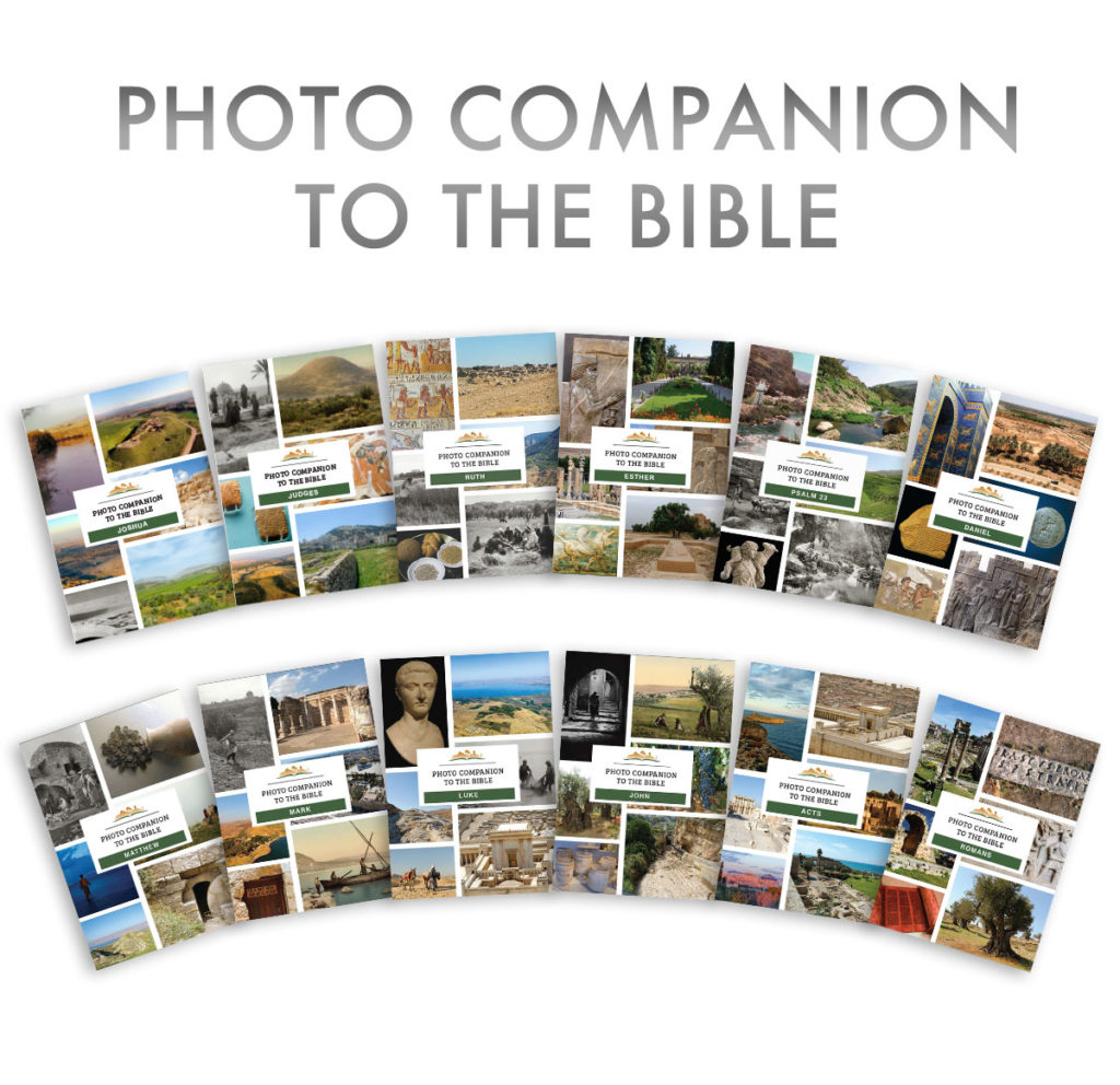 Photo Companion, 12 volumes