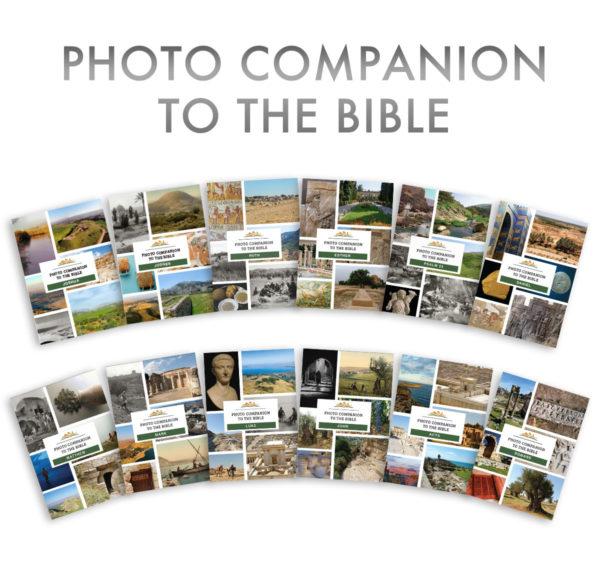 Photo Companion, 12 volumes