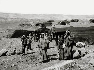 Bedouin tents